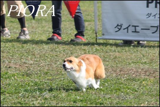木曽三川10.39j