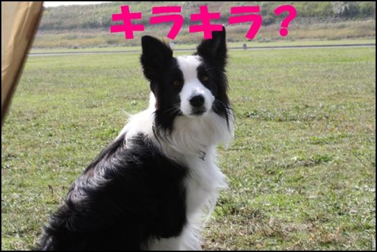 木曽三川10.53j