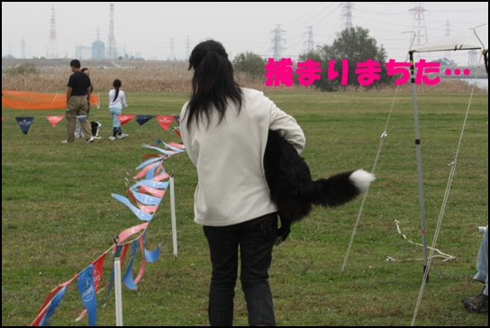 木曽三川11.1く