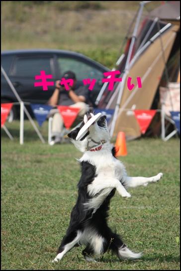 木曽三川11.1あ