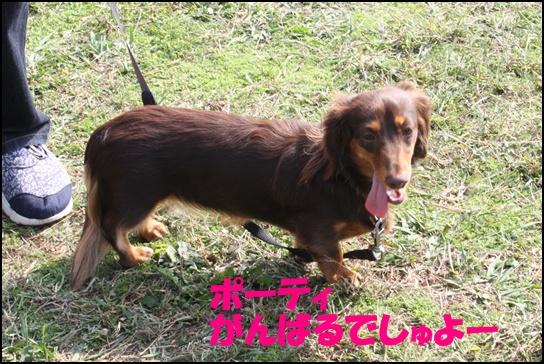 木曽三川11.1す