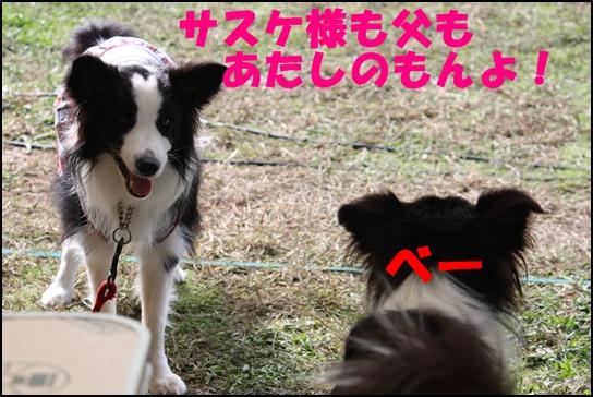 木曽三川11.2る