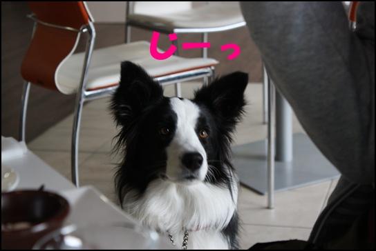 epi3.jpg
