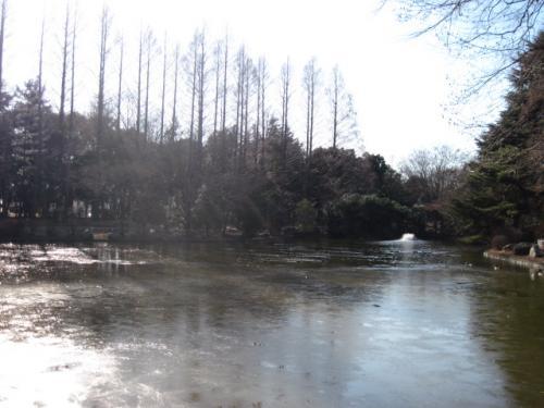 池もあります