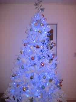 クリスマスツリー@でかっ!