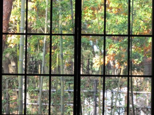 昔のガラスは歪みが美しいのです
