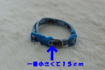 2010031810481153f.jpg
