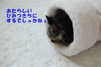 20100418112947c29.jpg