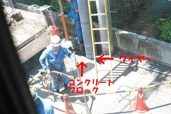201006041200102b1.jpg