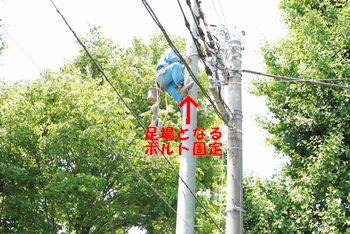 20100604120312a01.jpg