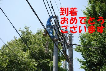 201006041205140dc.jpg