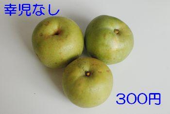 201008301248573b4.jpg