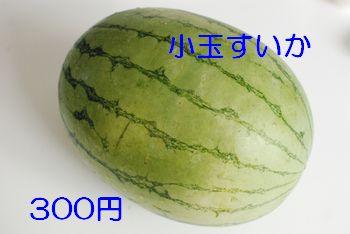 20100830124943bda.jpg
