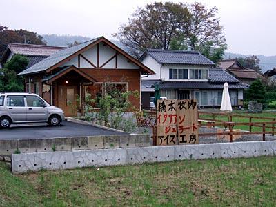 hashimoto007.jpg