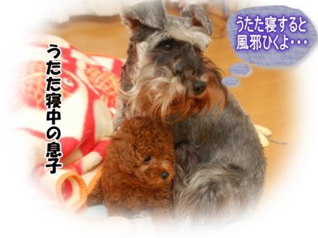 DSC_0018_20111006000552.jpg