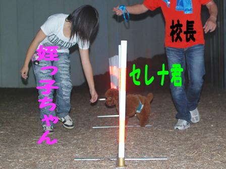 DSC_0116_20110523163902.jpg