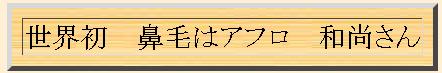 俳句自動作成マシン_1258016696632
