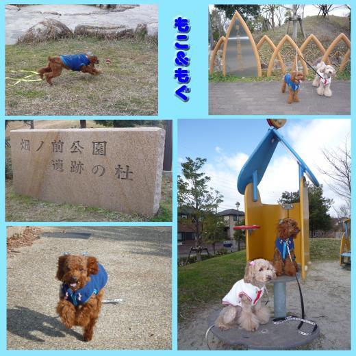 1_convert_20100101200753.jpg