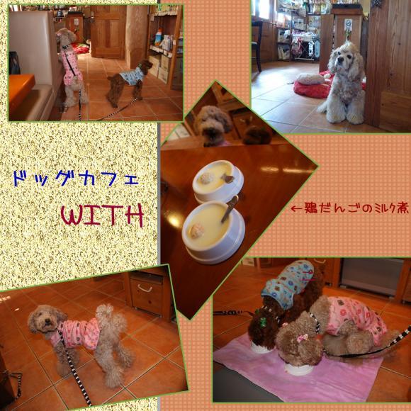 5縺ョ繧ウ繝斐・_convert_20091219132551
