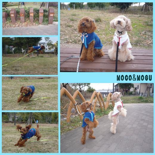 2_convert_20100101200930.jpg