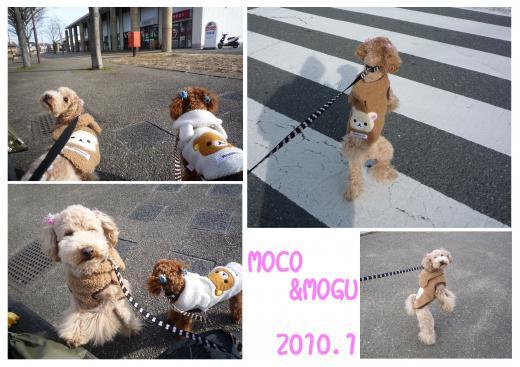 4_convert_20100109211302.jpg