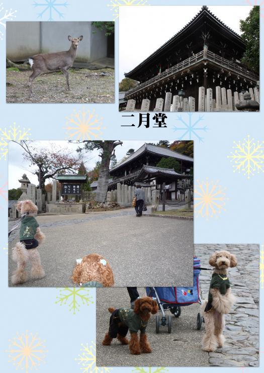 5_convert_20091121125454.jpg