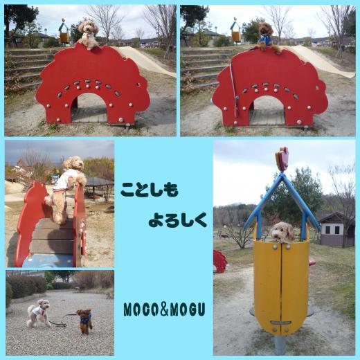 5_convert_20100101201321.jpg