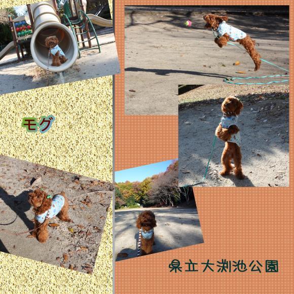 _convert_20091219132415.jpg