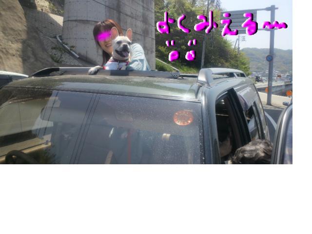 snap_puko0429_201153134659.jpg