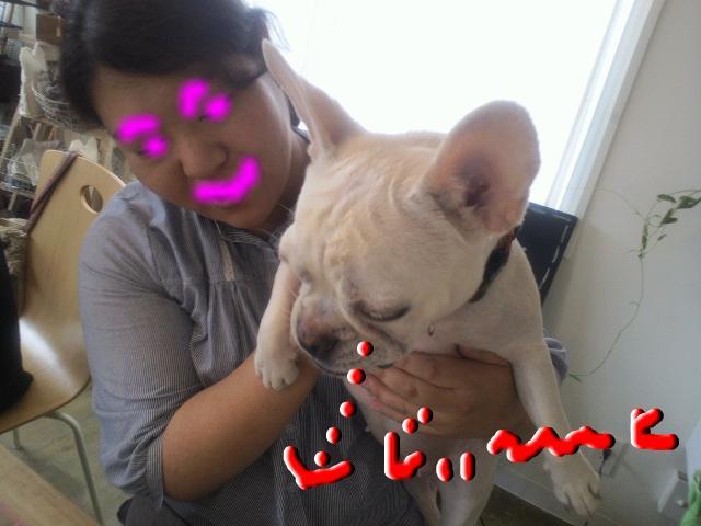 snap_puko0429_20116415458.jpg