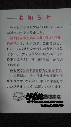 2011052820020000.jpg