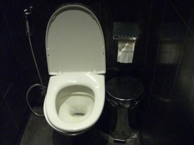 100115トイレ(デリー)