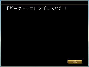 20100124_3.jpg