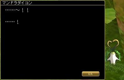20100307_9.jpg