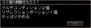 20100312_15.jpg