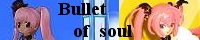 Bullet of soul