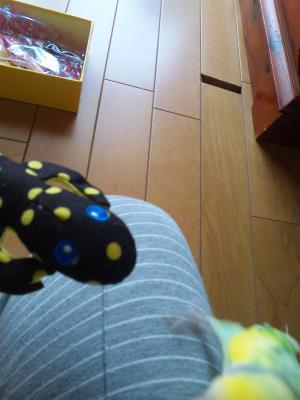 ブログ11