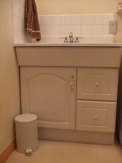 洗面所ゴミ箱4