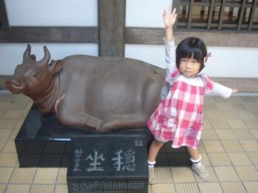 京都1103