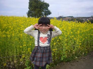 ha-besuto3.jpg