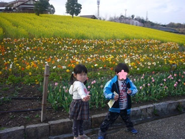 ha-besuto6.jpg
