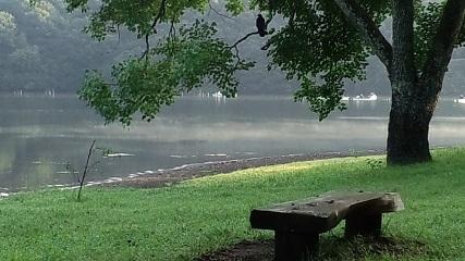 一碧湖朝霧