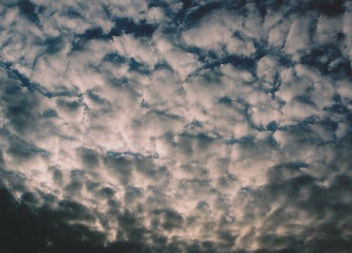 20100120_017.jpg