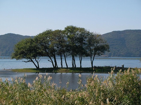 琵琶湖15