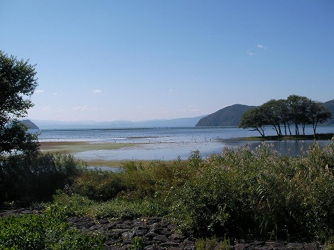 琵琶湖13