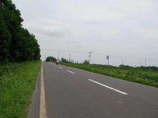 20100803-018.jpg