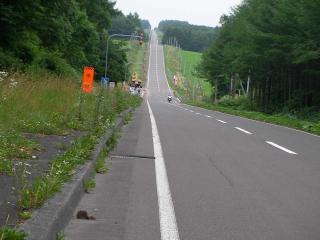 20100803-020.jpg