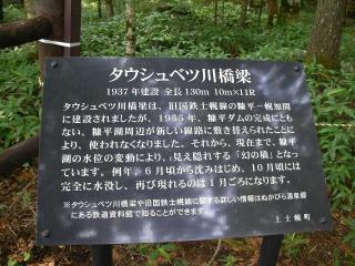 20100805-005.jpg