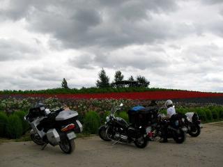 20100806-011.jpg