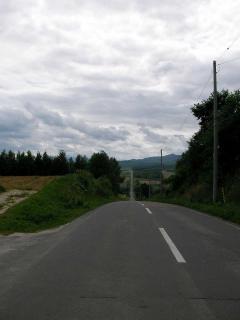 20100806-015.jpg